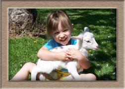 Lamb Photo - Easter-Willow Click to Win